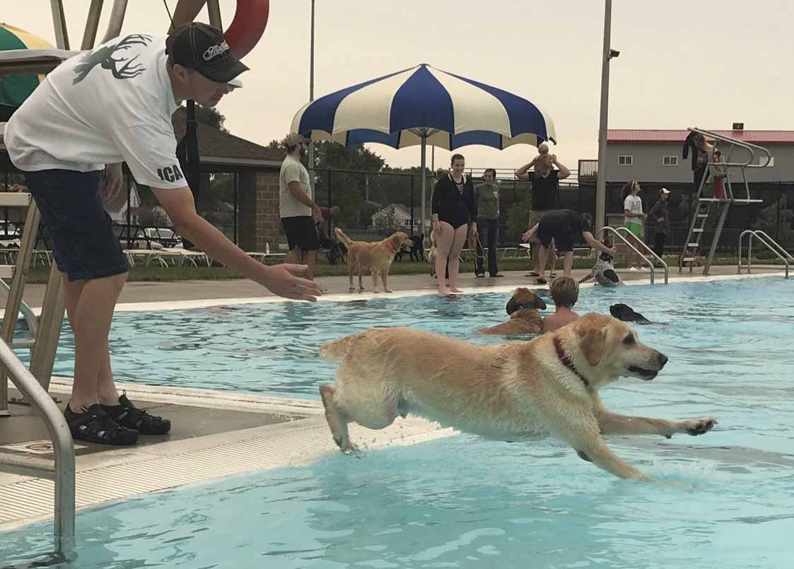 Tim Schultz of Monticello watches as his dog Owen jumps into the pool. (Photo by Sheralyn Schultz)
