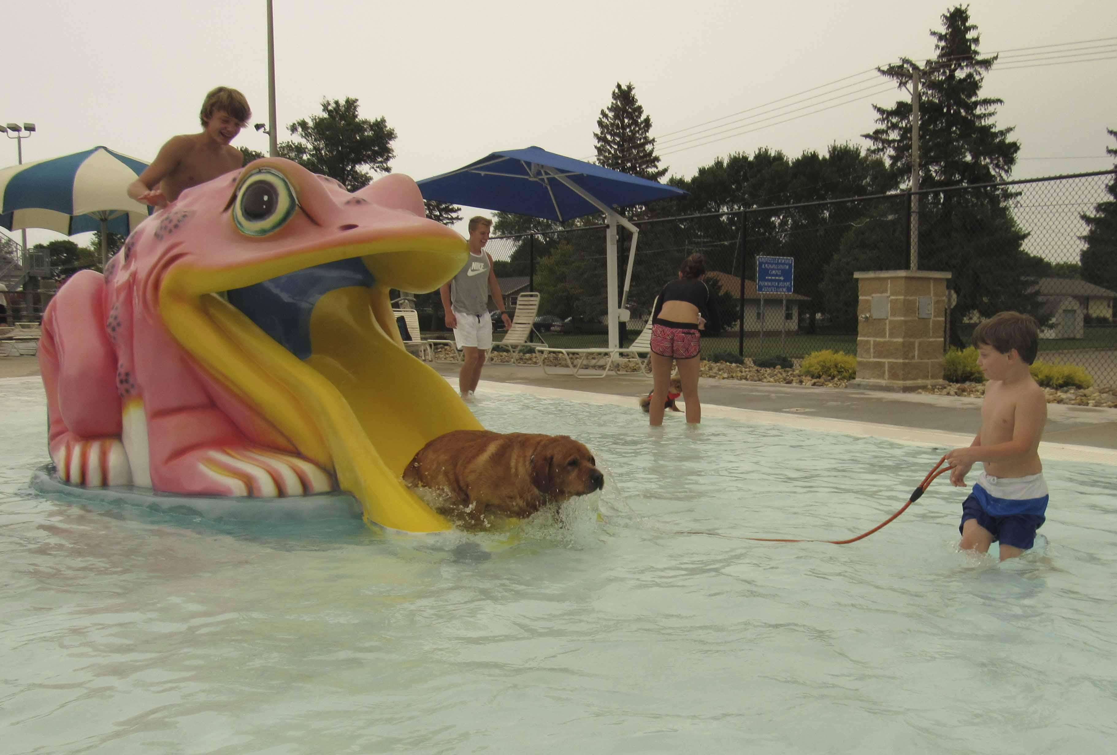 Sullivan and Soren Flynn of Scotch Grove help their dog Zeus down the kiddie slide for the Sept. 4 doggie swim. (Photo by Kim Brooks)