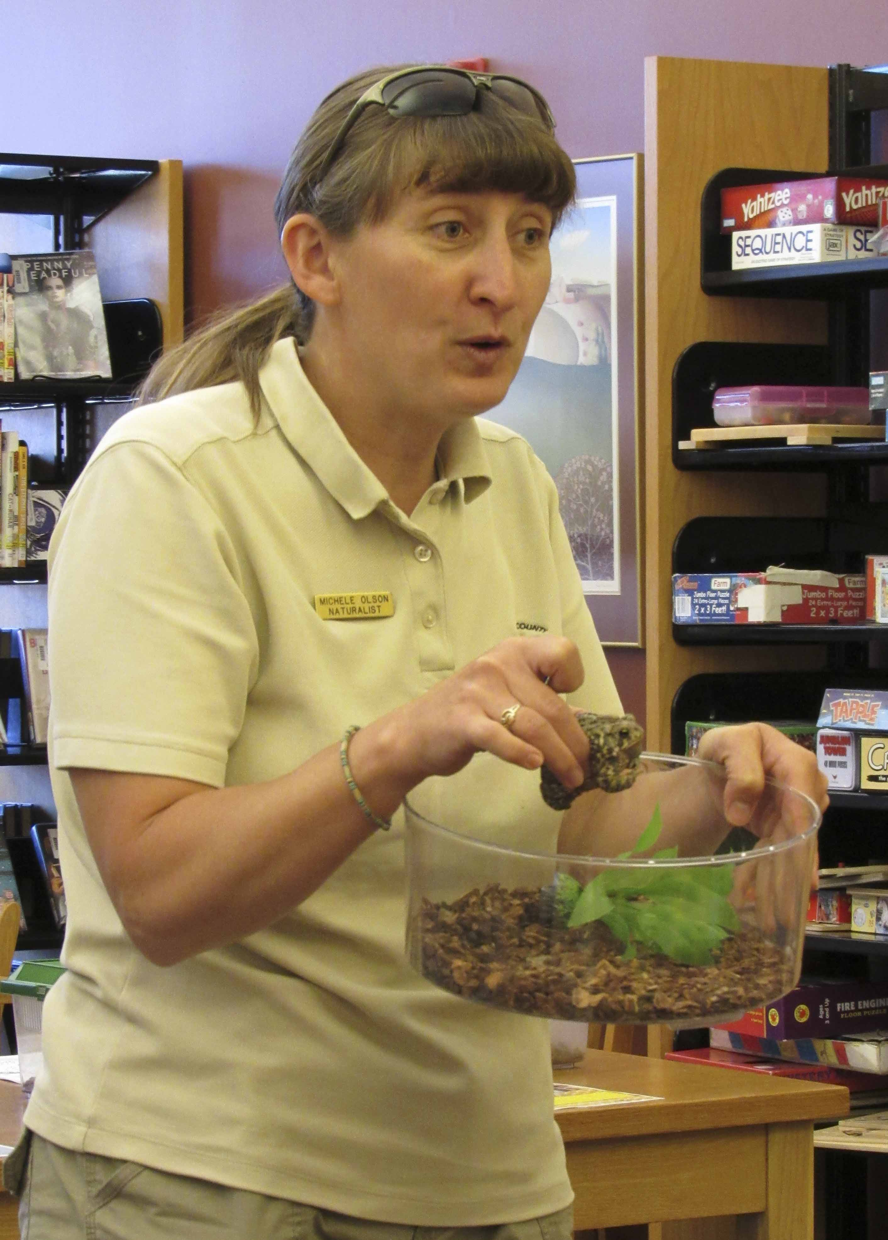 Olson's program at the library was all about backyard animals. She brought along a toad, box turtle, and garter snake for kids to see. Here, she introduces the crowd to a toad that's housed at the Nature Center at Central Park.