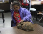 Raelyn Curtis of Starmont pets a bunny during the Camp Courageous Spring Break Bash.